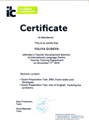 Julia Guseva - Zno preparation - 11.11.2016